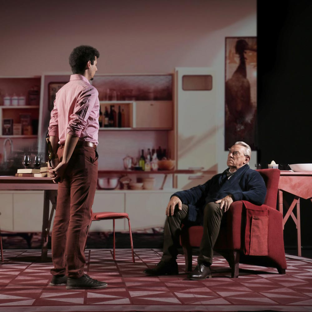 Platonica-teatro-Canarias-Jose-Manuel-Segado-Antimateria-11.jpg